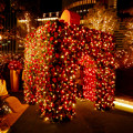Photos: 大名古屋ビルヂング スカイガーデンのクリスマスイルミネーション 2020 No - 7