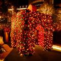 大名古屋ビルヂング スカイガーデンのクリスマスイルミネーション 2020 No - 7