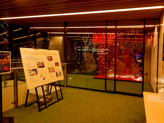大名古屋ビルヂング スカイガーデンのクリスマスイルミネーション 2020 No - 1