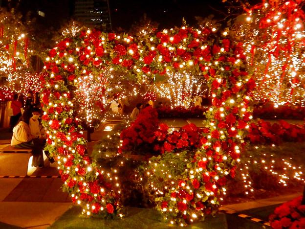Photos: 大名古屋ビルヂング スカイガーデンのクリスマスイルミネーション 2020 No - 4