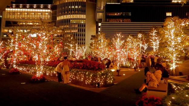 大名古屋ビルヂング スカイガーデンのクリスマスイルミネーション 2020 No - 11