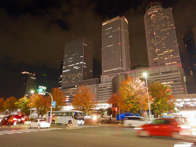 名古屋駅西口から見上げた名駅ビル群(秋)- 12
