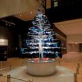 ミッドランドスクエア:ガラスのお皿で作ったクリスマスツリー - 4