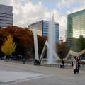 Photos: 白川公園の紅葉 - 5