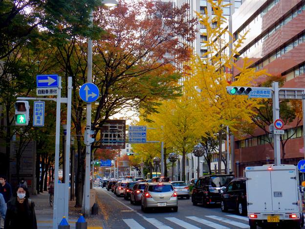 広小路通の紅葉
