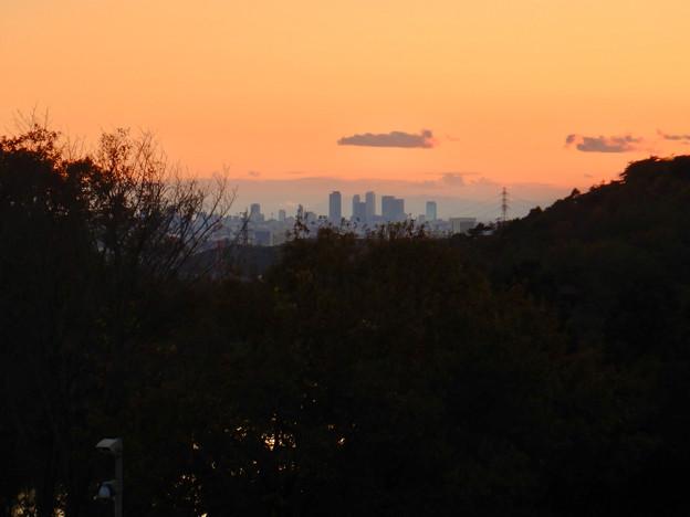 弥勒山の麓から見た名駅ビル群と夕焼け - 1