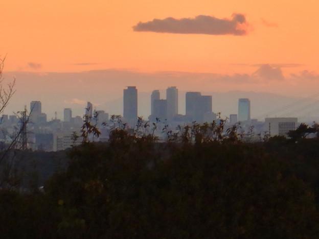 弥勒山の麓から見た名駅ビル群と夕焼け - 2