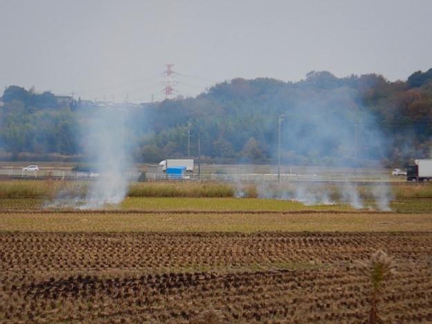 田んぼで野焼き - 1