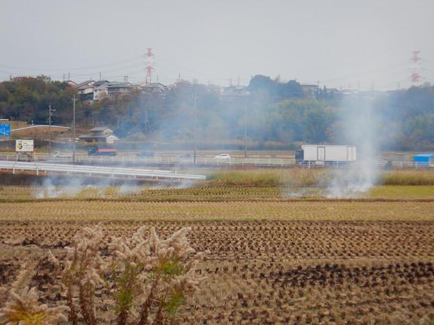 田んぼで野焼き - 2