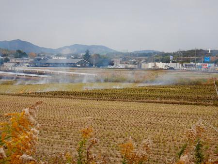 田んぼで野焼き - 6