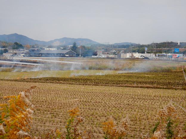 Photos: 田んぼで野焼き - 6