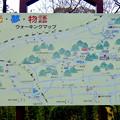 Photos: 定光寺自然休養林 森林交流館 - 2:周辺案内図「緑・光・夢・物語ウォーキングマップ」
