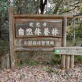 Photos: 定光寺自然休養林 入り口(定光寺側)- 2