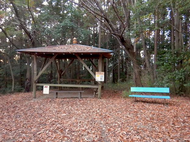 Photos: 高根山 頂上 - 3:東屋とベンチ