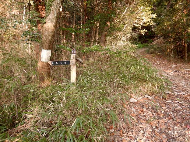 弥勒山の遊歩道 No.26 の分かれ道 - 2