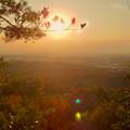Photos: 弥勒山の遊歩道 No.27~35の間にある眺めの良い場所 - 3:夕日と西高森山