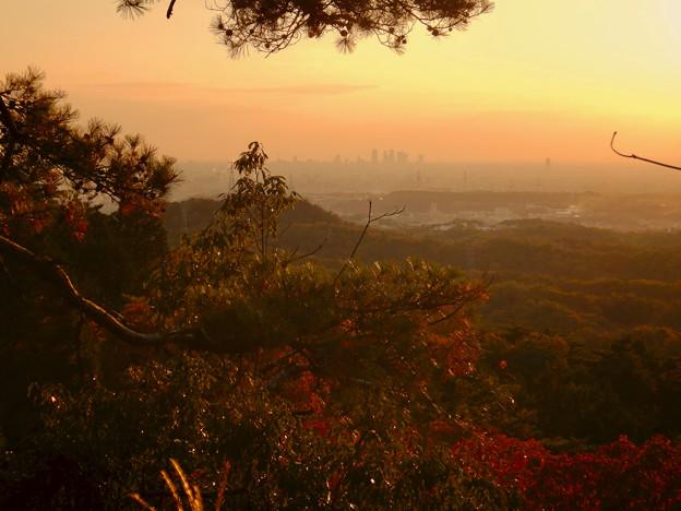 弥勒山の遊歩道 No.27~35の間にある眺めの良い場所 - 7:遠くに名駅ビル群