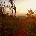 弥勒山の遊歩道 No.27~35の間にある眺めの良い場所 - 13:西高森山