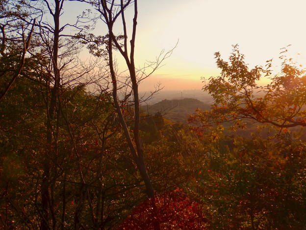 Photos: 弥勒山の遊歩道 No.27~35の間にある眺めの良い場所 - 14:西高森山