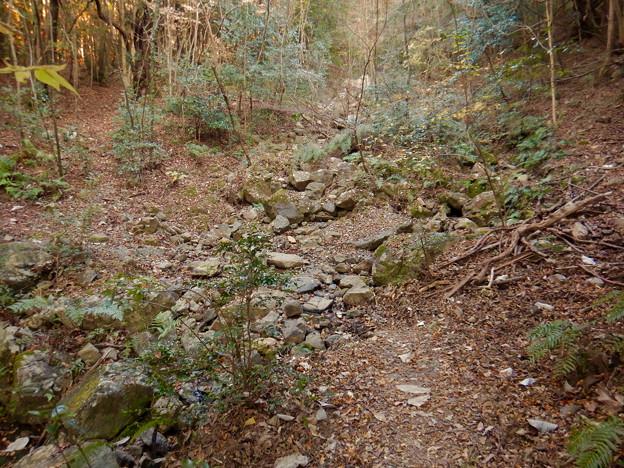 Photos: 弥勒山:杉洞川の源流部 - 1