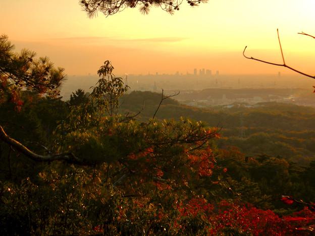 弥勒山の遊歩道 No.27~35の間にある眺めの良い場所 - 8:遠くに名駅ビル群
