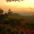 Photos: 弥勒山の遊歩道 No.27~35の間にある眺めの良い場所 - 8:遠くに名駅ビル群