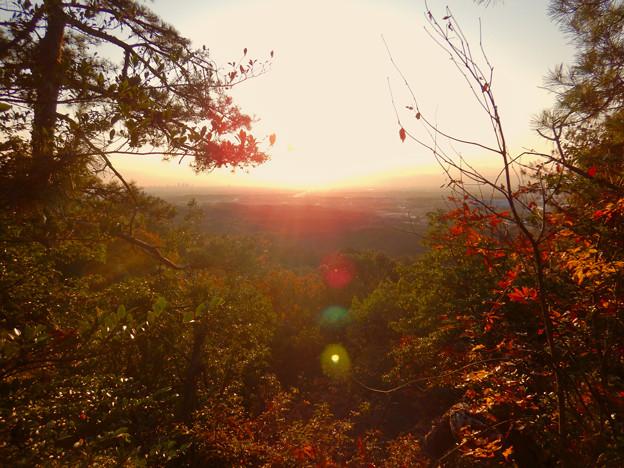 Photos: 弥勒山の遊歩道 No.27~35の間にある眺めの良い場所 - 2
