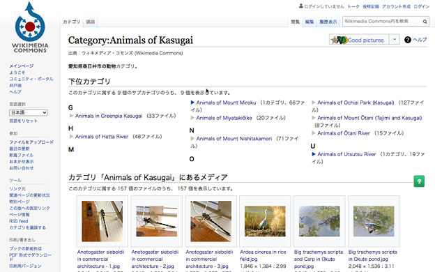 Wikimedia Commons:Animal of Kasugaiのページ - 1(PCで閲覧)