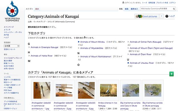 Wikimedia Commons:Animal of Kasugaiのページ - 1(PCで閲覧)