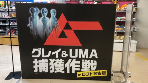 ロフト名古屋:雑誌『ムー』のコラボ企画「グレイ & UMA捕獲作戦」 - 2