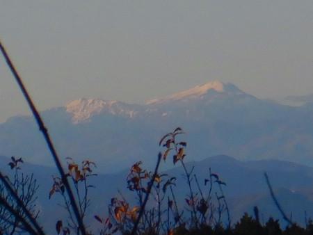 弥勒山山頂から見た郡上方面の山 - 2