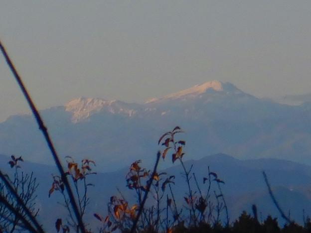 Photos: 弥勒山山頂から見た郡上方面の山 - 2