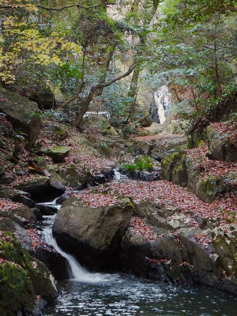 秋の定光寺川 - 2