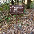 Photos: 定光寺川沿いの東海自然歩道に立てられていた「国有林無償貸付契約地」の立て札 - 1