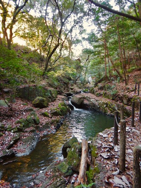秋の定光寺川 - 1