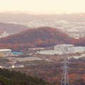 Photos: 弥勒山から見た紅葉した高森山 - 1