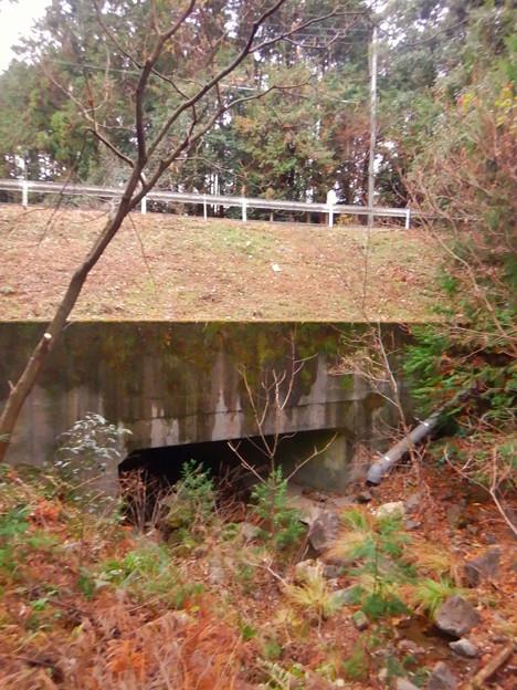 弥勒山の麓、県道53号春日井瀬戸線下を通る大谷川源流 - 1