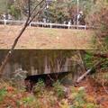 Photos: 弥勒山の麓、県道53号春日井瀬戸線下を通る大谷川源流 - 1