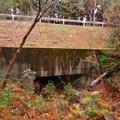 Photos: 弥勒山の麓、県道53号春日井瀬戸線下を通る大谷川源流 - 2