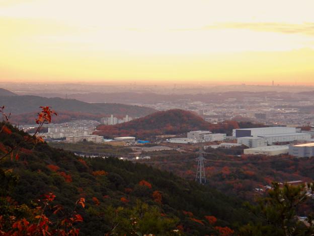 弥勒山から見た紅葉した高森山 - 3