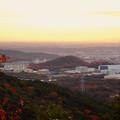 Photos: 弥勒山から見た紅葉した高森山 - 3