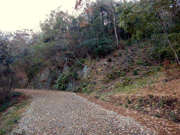 ふれあいの森:工事用モノレールかが撤去(2021年1月) - 1