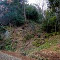 Photos: ふれあいの森:工事用モノレールが撤去(2021年1月) - 2