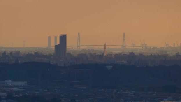 西高森山山頂から見た名港中央大橋 - 1