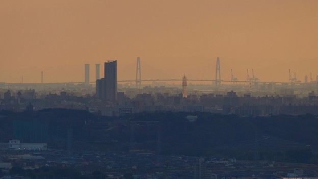 Photos: 西高森山山頂から見た名港中央大橋 - 1
