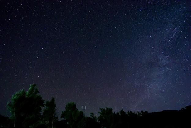 星の数ほど
