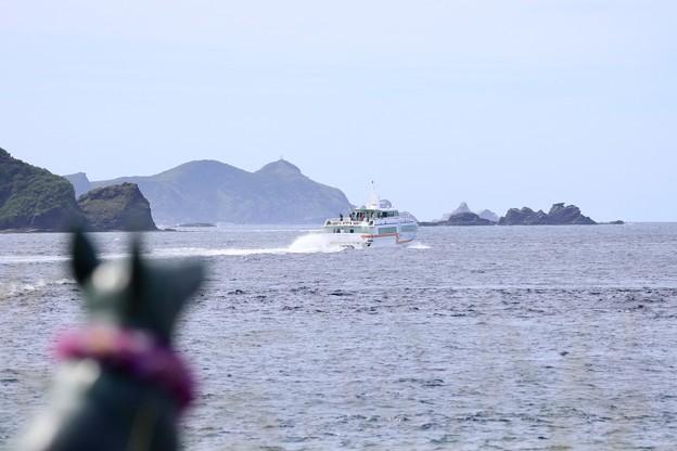 マリリンと高速船