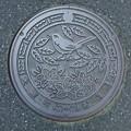 Photos: 岩手県大東町(だいとうちょう)(現一関市)