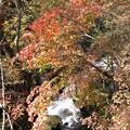 Photos: 竜頭の滝と紅葉