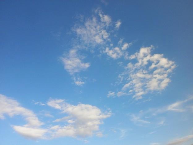 秋の青い空